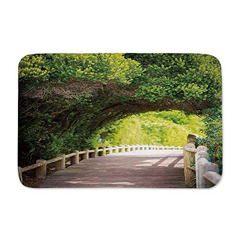 YOLIYANA Forest Entrance Door Mat,Nature Boardwalk Through Green Archway Bridge Foliage Trees Sunny Summer Day for Entryway,23