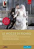 Le Nozze De Figaro [DVD] [Import]
