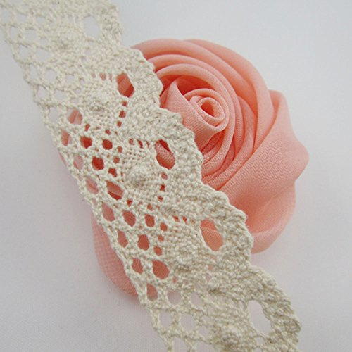 - Bluemoon 5 Yards - 25mm Cotton Ribbon lace Trim Dress Lace Trim Cotton Cluny Lace Embroidery White BA0024
