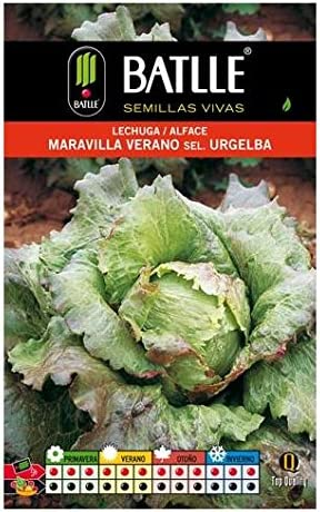 Batlle 013715bols - Semillas de Lechuga Maravilla de Verano Sel ...