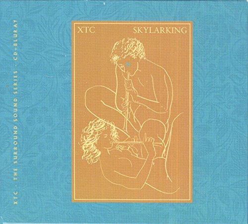 Band Japanese Rock - Skylarking: 30th Anniversary Definitive Edition [Blu-ray]
