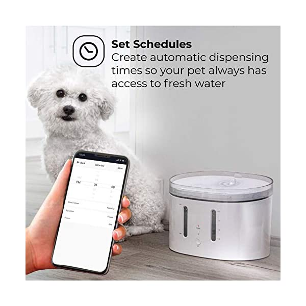 Home Zone Pet Water Fountain - Smart Wireless Water Fountain for Small Cats and Dogs, 2L 3