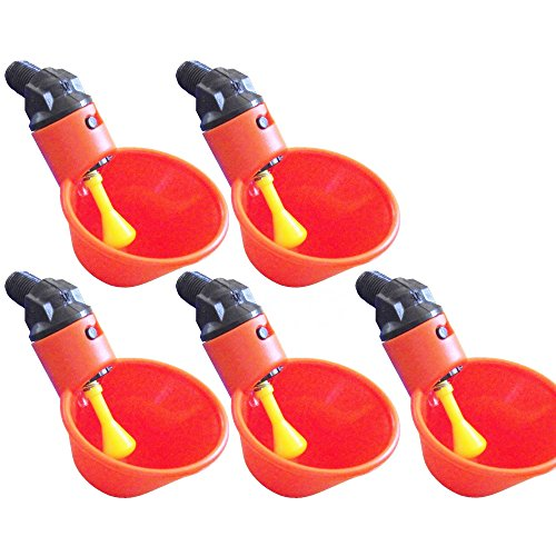 Poultry Water Drinking Bird Coop Hen Feed Automatic Poultry Chicken Water Drinking 5pcs (Oyster Costume)