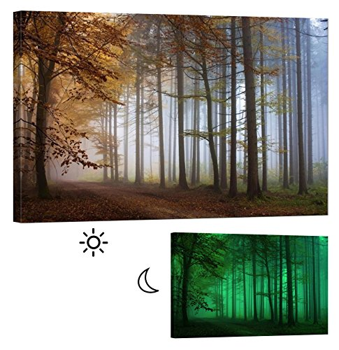 LightFairy Glow in the Dark Canvas Painting - Stretched and Framed Giclee Autumn Forest Wall Art Print for Master Bedroom Rustic Living Room Decor - Glowing Minimum 6 Hours - 36 x 24 Inch by LightFairy