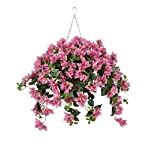 House-of-Silk-Flowers-Artificial-Orchid-Pink-Bougainvillea-in-Square-Hanging-Basket