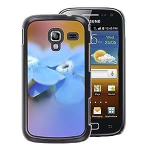 A-type Arte & diseño plástico duro Fundas Cover Cubre Hard Case Cover para Samsung Galaxy Ace 2 (Flower Blue Spring Nature)