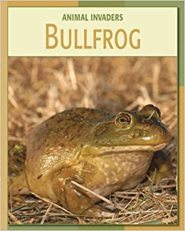 Bullfrog (Animal Invaders)