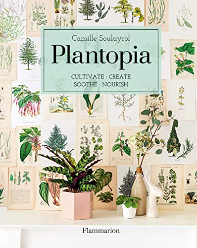 Pdf Home Plantopia: Cultivate / Create / Soothe / Nourish