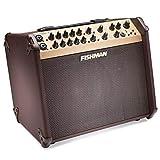 Fishman Acoustic Guitar Amplifier