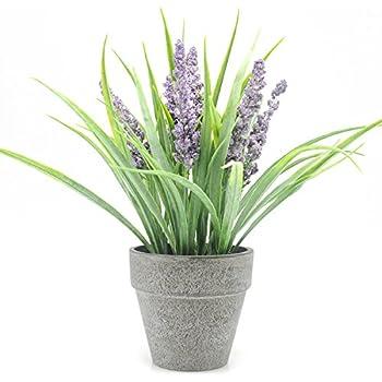 Velener Mini Artificial Lavender in Pot Fake Flower Arrangement for Home Decor (Purple)