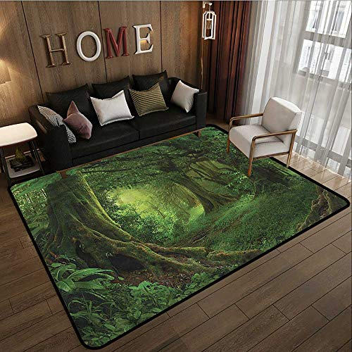 Classroom Rug Forest Enchanted Tropical Woodland Ideal Gift for Children 6'6