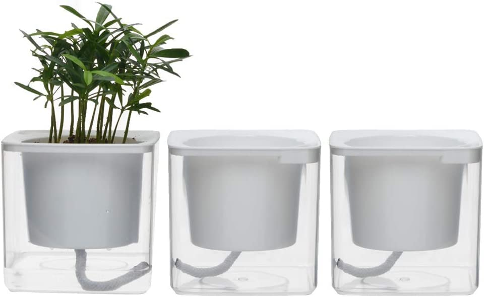 "4 inch Self Watering Planter Pots Indoor Home Garden Modern Decorative Pot for Potting Small House Plants African Violet Cactus Herbs Succulents or Start Seedlings (Transparent/4"")"