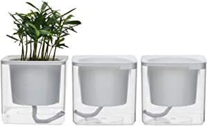 """4 inch Self Watering Planter Pots Indoor Home Garden Modern Decorative Pot for Potting Small House Plants African Violet Cactus Herbs Succulents or Start Seedlings (Transparent/4"""")"""