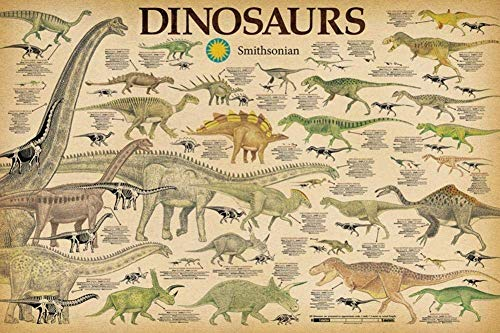 Studio B Laminated Smithsonian- Dinosaurs Info Chart Poster 36 x 24in ()