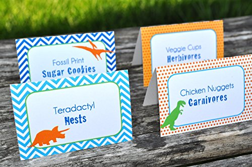Dinosaur Birthday Party Food Labels - Personalized and Printed - Set of 12
