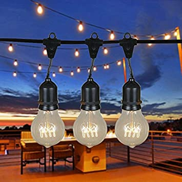 48 Foot A19 Edison Outdoor String Lights   Suspended   Commercial Grade  String Lights   Backyard