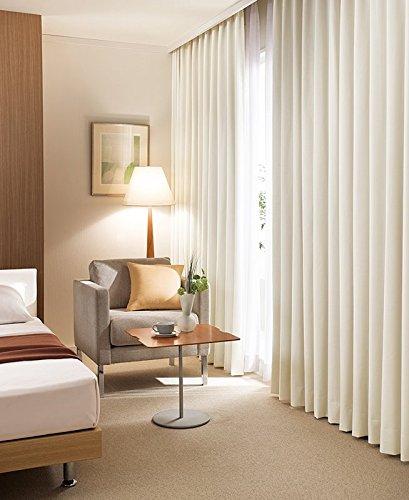東リ ベーシックな配色が使いやすい遮音カーテン カーテン1.5倍ヒダ KSA60239 幅:250cm ×丈:300cm (2枚組)オーダーカーテン   B077TBPHDK