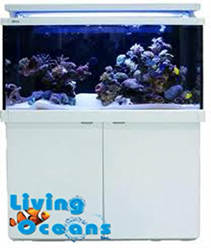 Red Sea MAX S-Series 650 Plug & Play Coral Reef System 175 (Red Sea Max Reef Aquarium)