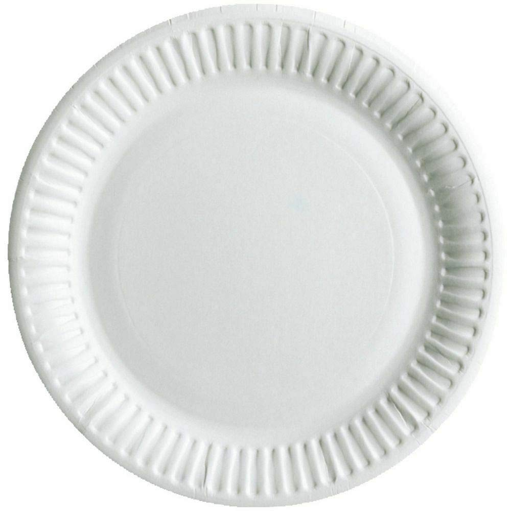 Manufacture Sealed 6-INCH Best Hygiene Standards 100 Paper Plates Disposable Plates for Party Outdoor Available in 6Inch // 7inch // 9Inch
