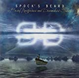 Brief Nocturnes & Dreamless Sleep by Spock's Beard