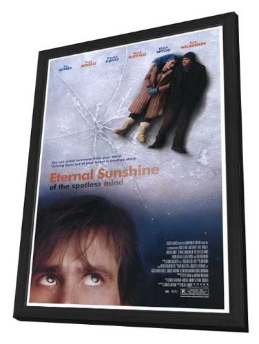 Movie Posters Eternal Sunshine of The Spotless Mind - 27 x 40 Framed