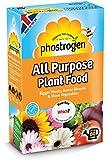 Phostrogen tous usages Plante Nourriture 80Peut