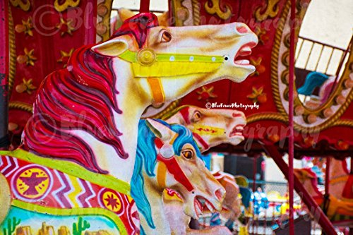 (Colorful Horses, Coney Island, Carousel, Art Print, Wall Decor, New York City Photograph, Wall Art, Living Room Decor, Nursery, Sizes Available from 5x7 to 20x30.)