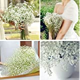 Zehui Wedding Flower Pretty Artificial Fake Gypsophila Babys Breath Flower Plant Home Wedding Decor only 1 pcs