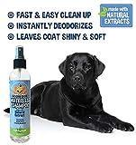 Bodhi Dog Non-Toxic Waterless Dog Shampoo, 8oz