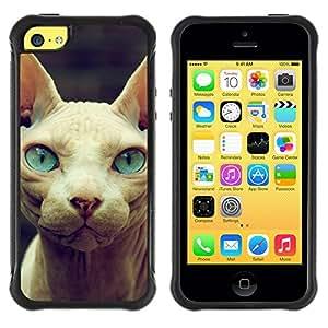 Suave TPU GEL Carcasa Funda Silicona Blando Estuche Caso de protección (para) Apple Iphone 5C / CECELL Phone case / / Sphynx Donskoy Peterbald Blue Eyes Cat /