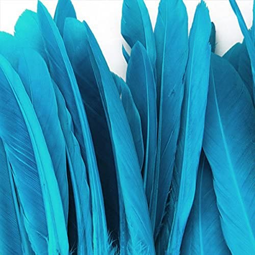 Vosarea 50 St/ücke 10-15 cm Blau dekorative Federn DIY Kunst Handwerk Federn farbige g/änsefedern f/ür Home Party Dekoration See blau