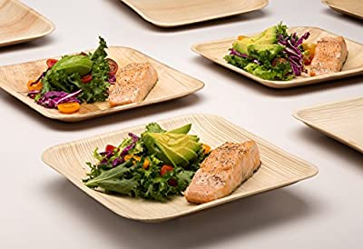 Compostable Disposable Plates, Eco Friendly Natural Palm leaf Plates, Perfect for Occasions and Parties. Chemical Free and 100% Biodegradable by Handy Leaf