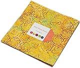 Wild Wave Batiks Layer Cake 42 10-inch Squares Moda Fabrics 4341LC offers