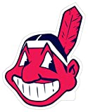 "MLB 8"" Logo Magnets"