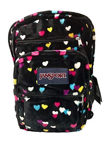 JanSport Big Student Backpack - First Love (Best Ergonomic Backpack For Students)