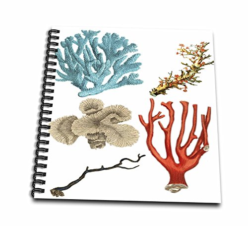 3drose Sea Life–イメージのAssorted Coral and Sea Life–Drawing Book 12x12 memory book db_256157_2