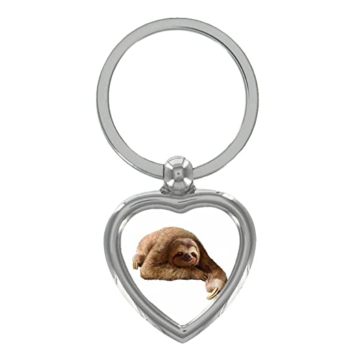 e18a869911783 Amazon.com: Sloth Image Heart Shaped Keyring in Gift Box: Clothing