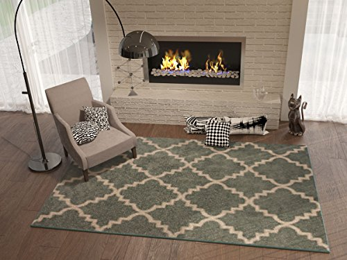 Accent Rug for Living Room: Amazon.com