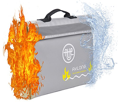 Fireproof and Waterproof Money and Important Documents Bag - Fire Protective Storage for Valuables with Double Closure and Reflective Band ()