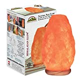 Himalayan Glow Natural Himalayan Salt Lamp,...