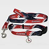 BSS - St. Louis Cardinals MLB Dog Collar & Leash Set (Small)