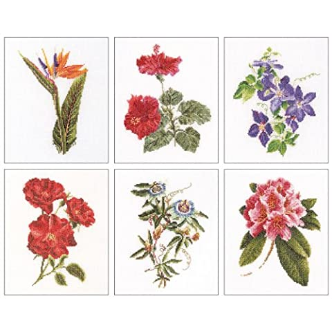 Thea Gouverneur 18 Count Counted Cross Stitch Kit, 6-3/4 by 8-Inch, Floral Studies 1 on Aida, Set of - Floral Counted Cross Stitch