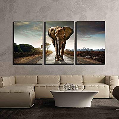 Single Elephant Walking in a Road with The Sun from Behind x3 Panels, With Expert Quality, Magnificent Artistry