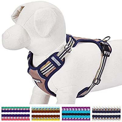 Blueberry Pet Soft & Comfortable 3M Reflective Multi-colored Stripe No-pull Mesh Padded Dog Harness Vest, 4 Colors, Matching Collar & Leash Available Separately