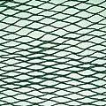 Green Woven Garden Bird Netting: 5m x 6m*