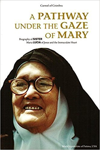 A Pathway Under the Gaze of Mary: Biography of Sister Maria Lucia of Jesus and the Immaculate Heart]()