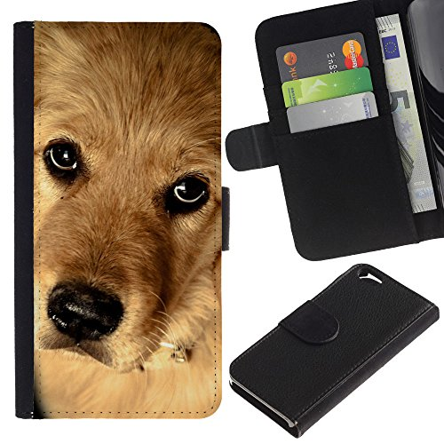 EuroCase - Apple Iphone 6 4.7 - golden retriever canadian mongrel dog - Cuir PU Coverture Shell Armure Coque Coq Cas Etui Housse Case Cover