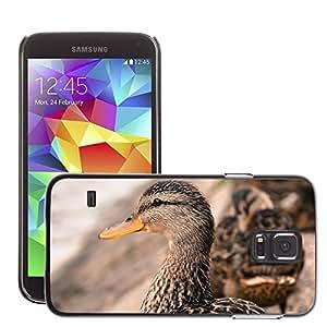 Etui Housse Coque de Protection Cover Rigide pour // M00134095 Pato Pico, Pájaro, Cabeza de animal // Samsung Galaxy S5 S V SV i9600 (Not Fits S5 ACTIVE)
