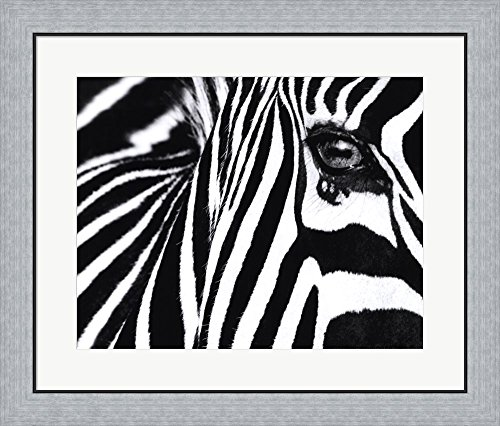 Great Art Now Black And White Ii By Rocco Sette Framed Art Print Wall Picture  Flat Silver Frame  28 X 24 Inches