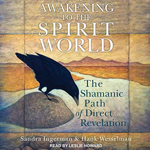 Awakening to the Spirit World: The Shamanic Path of Direct Revelation (The Direct Path)